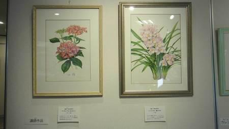 2016岡山植物画の会2.jpg