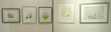 岡山植物画の会A2.jpg