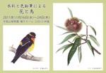 2011半田山案内状表.jpg