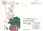2011神戸植物画の会案内状.jpg