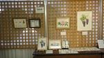 2011福山教室展2.jpg