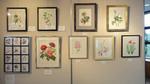 2012岡山植物画の会 カレンダー原画.jpg
