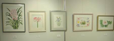 2016岡山植物画の会A.jpg