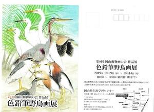 2019野鳥画案内状.jpg