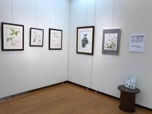 2021植物画倶楽部展IMG_1266.jpg