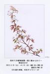 野田ゆき子植物画展案内状.jpg