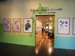 日本の固有植物展 2013 茨城.jpg