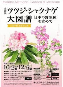 牧野記念庭園記念館 ツツジ・シャクナゲ大図譜IMG.jpg