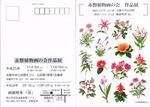 赤磐植物画の会案内状2014.jpg